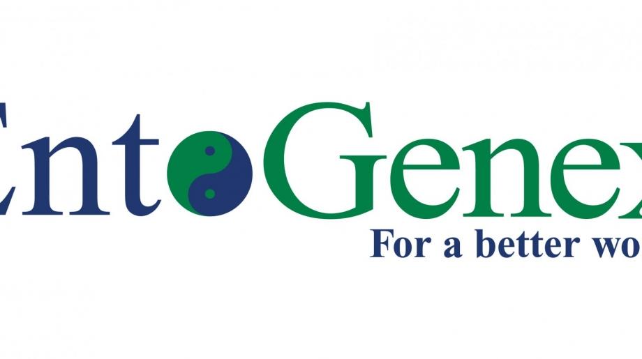 EntoGenex_cores